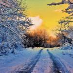 ¡Hoy se celebra el día mundial de la nieve!